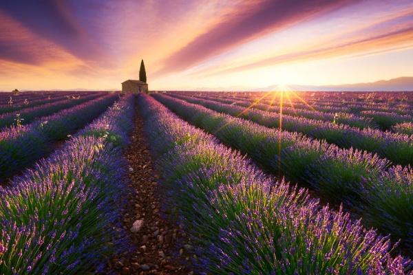 En busca del sol para capturar los atardeceres más bellos del mundo