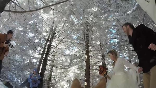 Un perro graba en un vídeo entrañable la boda de sus humanos
