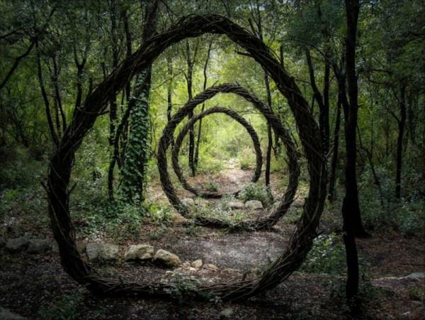 Un año en el bosque creando misteriosas esculturas inspiradas en la naturaleza