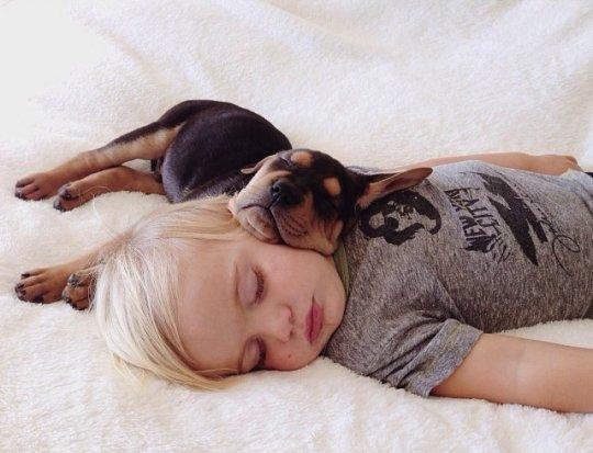 bebé durmiendo con su cachorro