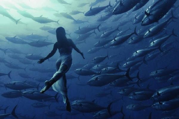 Las fotografías subacuáticas de Kurt Arrigo son un recordatorío de que vivimos en un mundo extraordinario