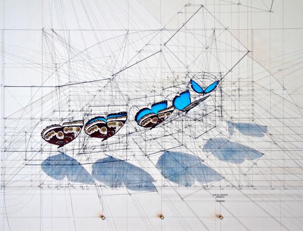 Calculation, los fascinantes dibujos de Rafael Araujo