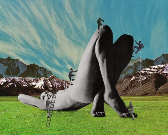 Collages de Sammy Slabbinck