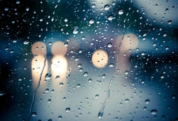 Las pinturas de días de lluvia de Shay Kun