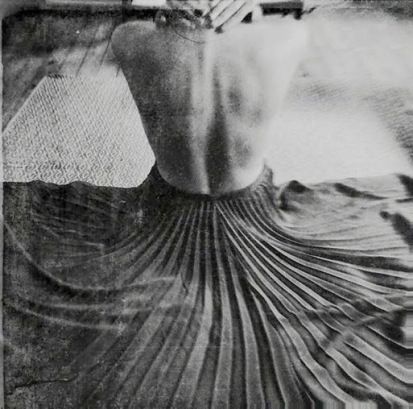La evocadora e imponente fotografía de Jonė Reed