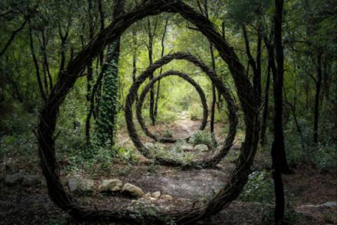 Un artista pasa año en el bosque creando misteriosas esculturas inspiradas en la naturaleza